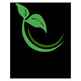 صندوق نوآوری و شکوفایی،صندوق توسعه صادرات و تبادل فناوری